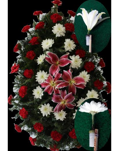 Coroana Garoafa, Crizantema Si Crin Olandez
